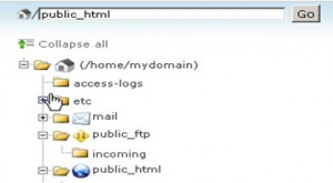 File tree showing file path for folders located in the /home/mydomain directory