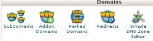 """""""Domains"""" category within the cPanel dashboard showing the Subdomains tool"""